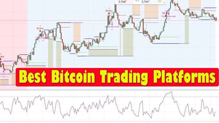 Best Bitcoin Trading Platform and How to Start Trading   Cointiko